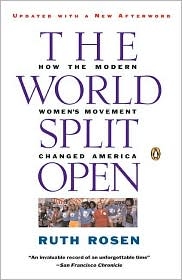 Ruth Rosen provides a lively and informative account of the modern American women's movement.