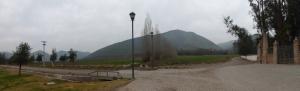 The view outside the Santa Rita vineyard.