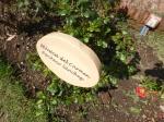 A rose garden that honors women victims at Villa Grimaldi.