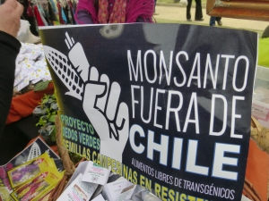 An anti-Monsanto sign at Parque Ines de Suarez on September 19.